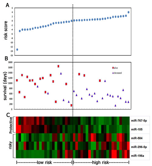 Five miRNA risk-score analysis of anaplastic gliomas (n=44).