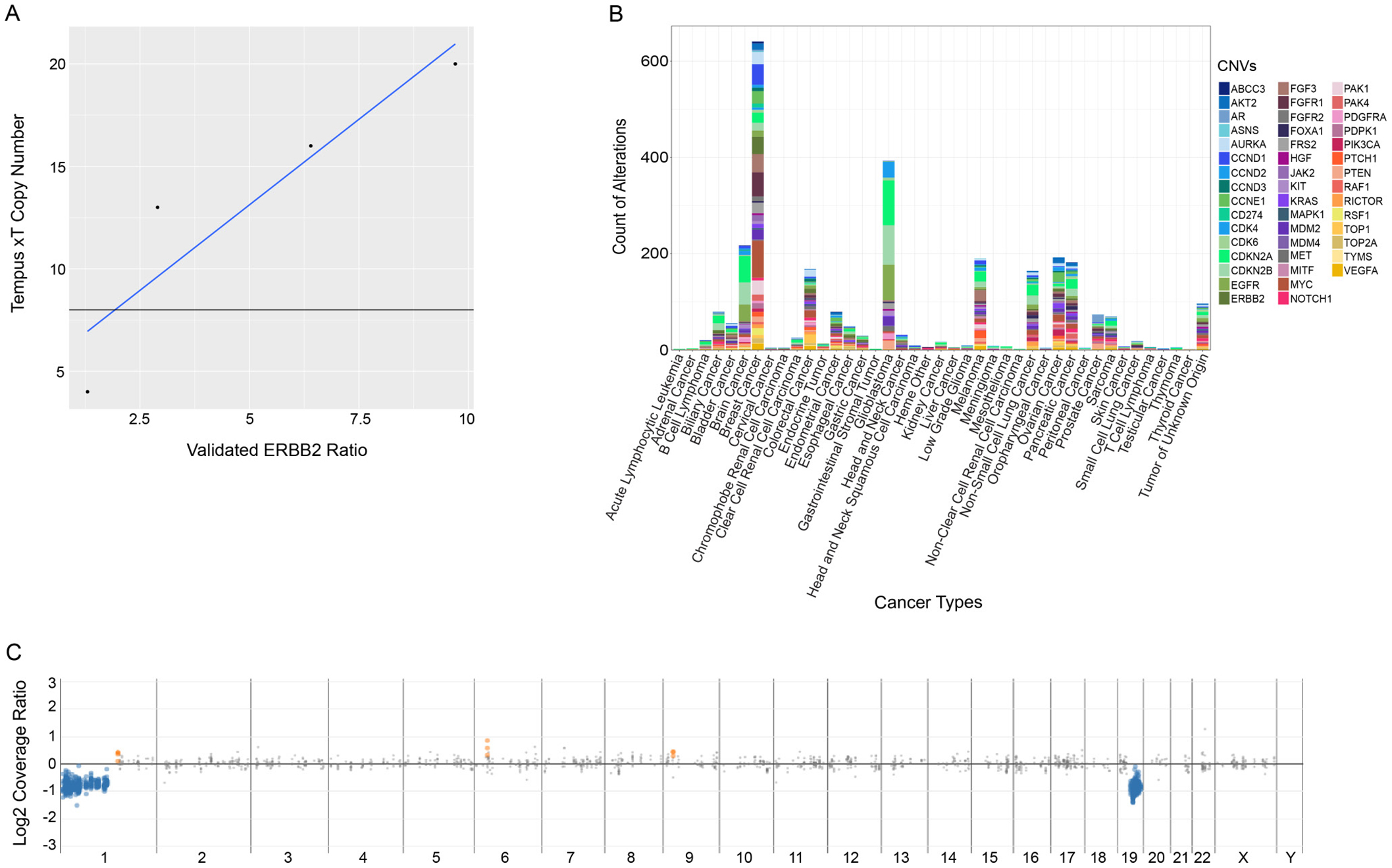 Analysis of performance of the xT assay in the detection of copy number variations.