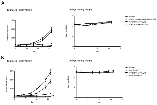 Antitumor effects of gilteritinib in combination with chemotherapy in mice xenografted with MOLM-13 cells.