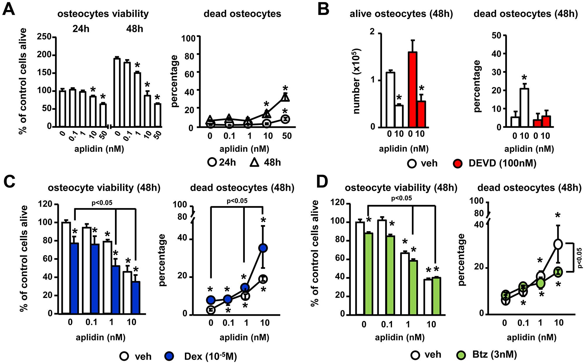 Aplidin decreases osteocyte viability.