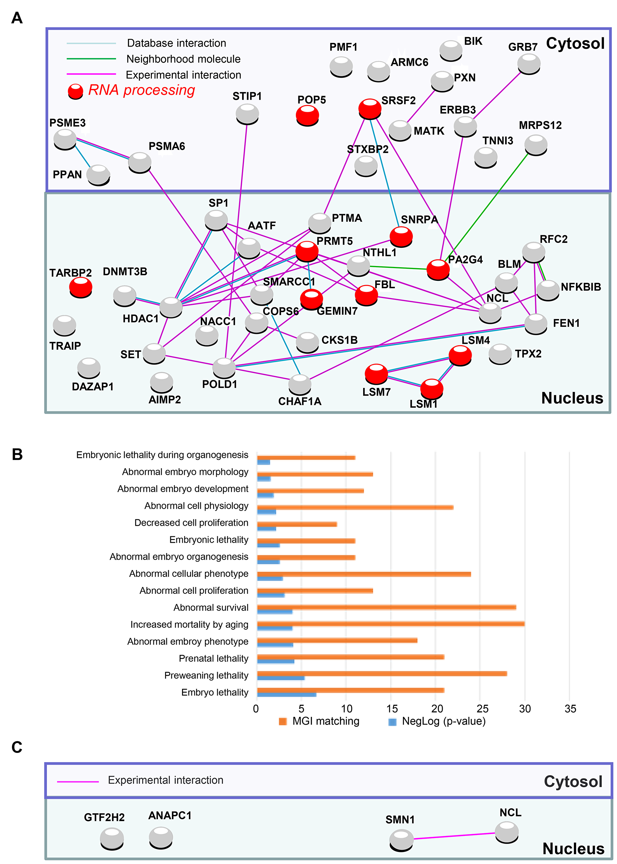 PluriNet and Mammalian phenotype analysis performed on genomic alterations of non-integrative hiPSCs.