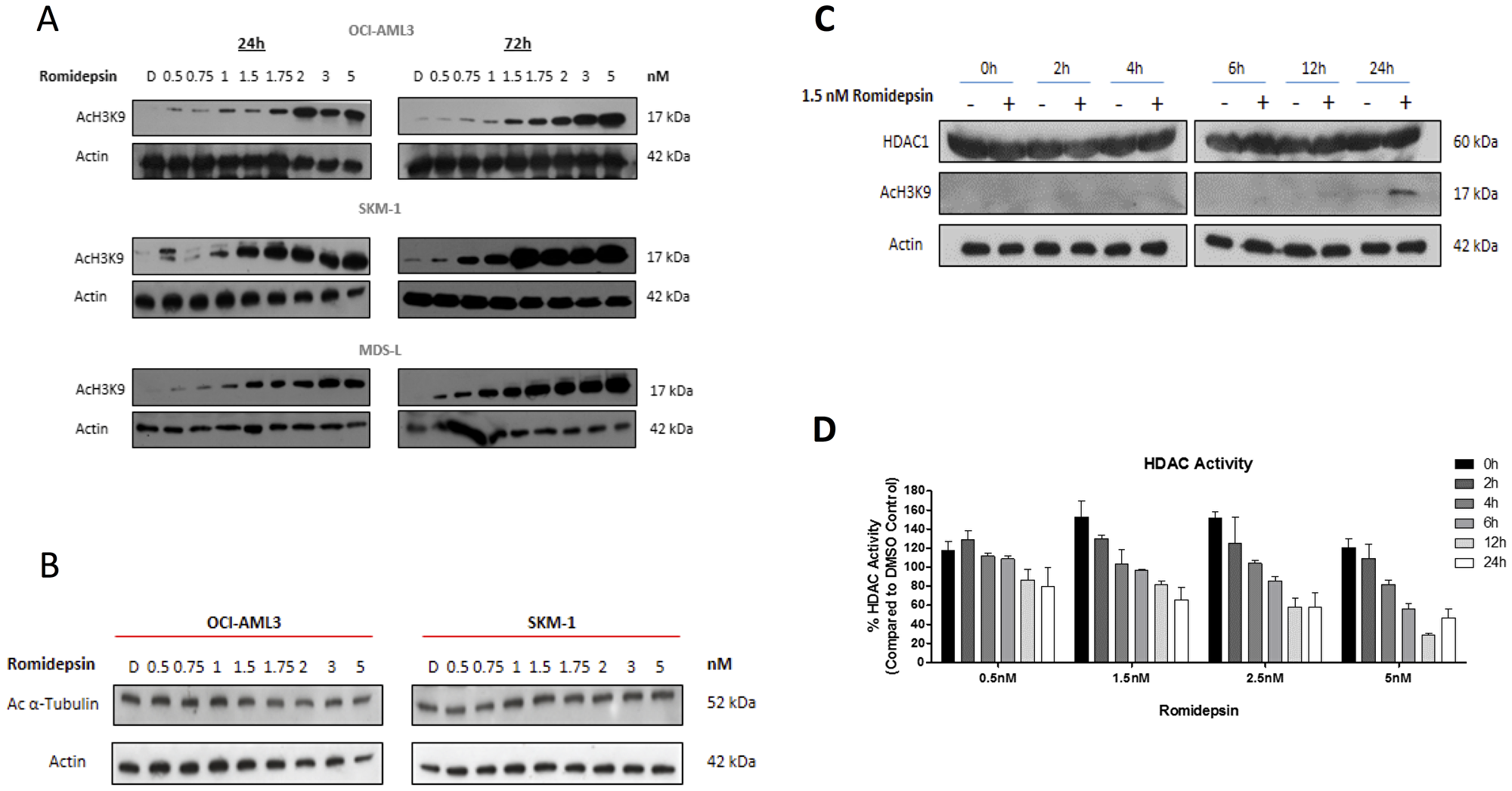 Romidepsin effects histone and protein acetylation.