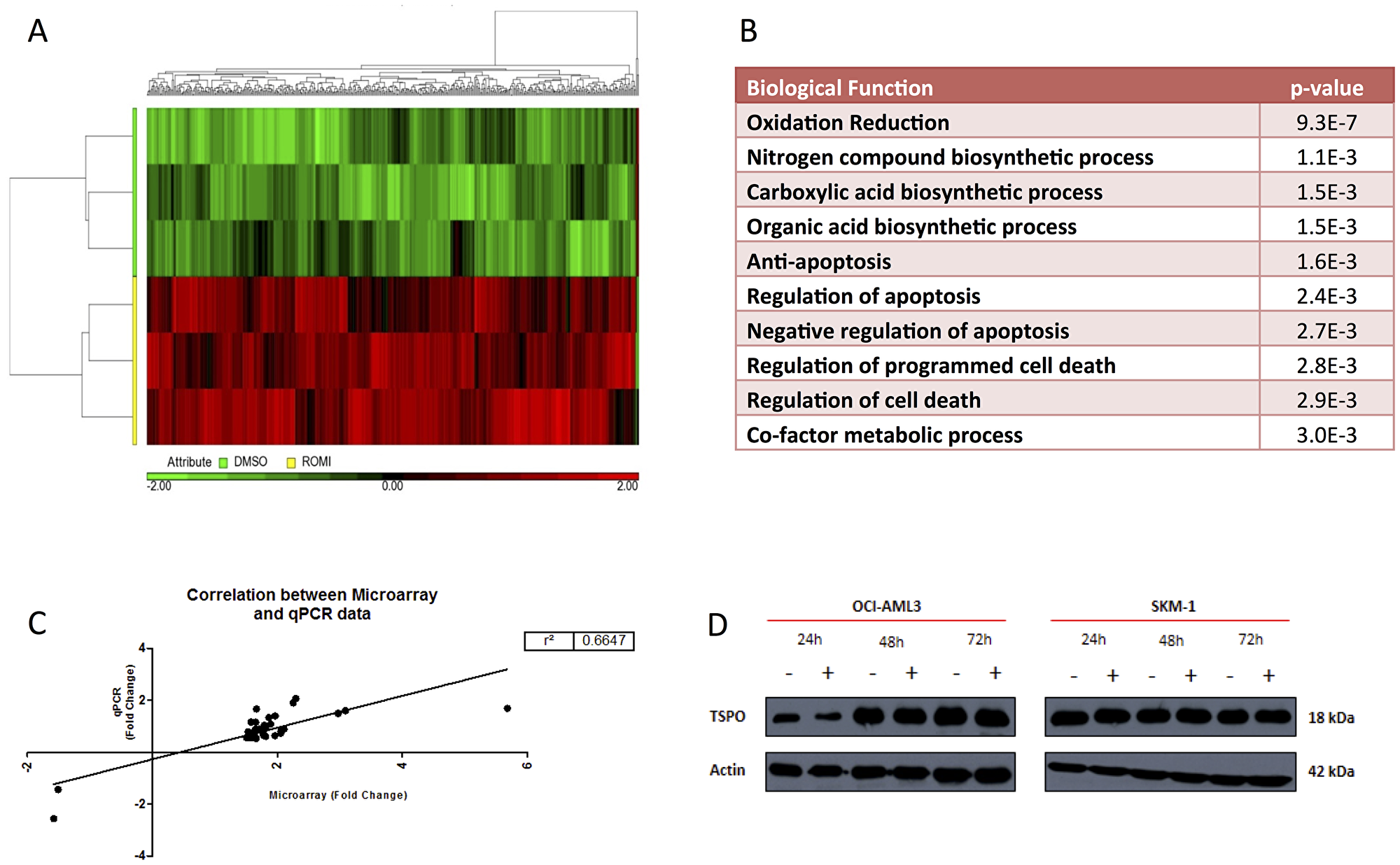 Unsupervised hierarchical clustering heat-map of 487 differentially expressed probe-sets between DMSO and Romidepsin treated samples in SKM-1 cells.