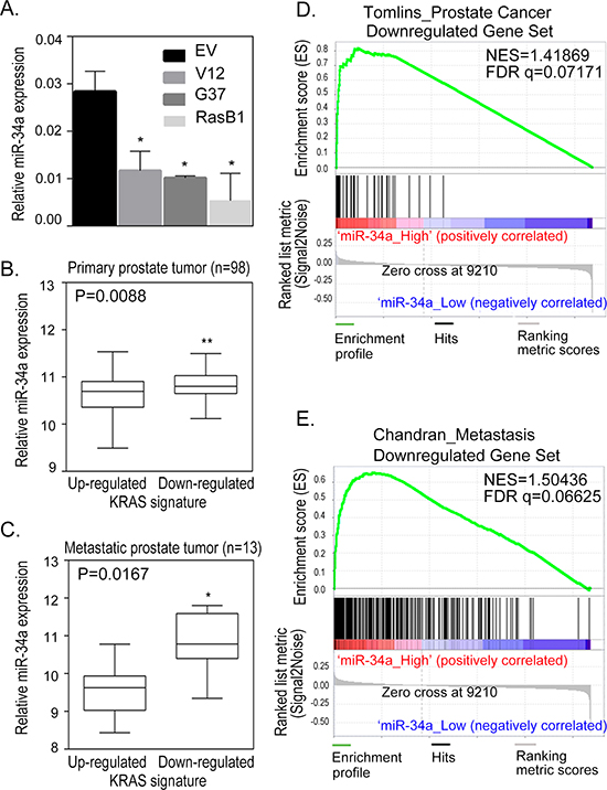 Reduction in miR-34a expression is related to Ras-induced prostate cancer metastasis.
