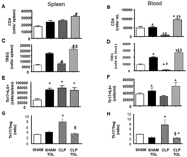 LPS tolerance effect on CD4, Treg and Th17 in septic animals.