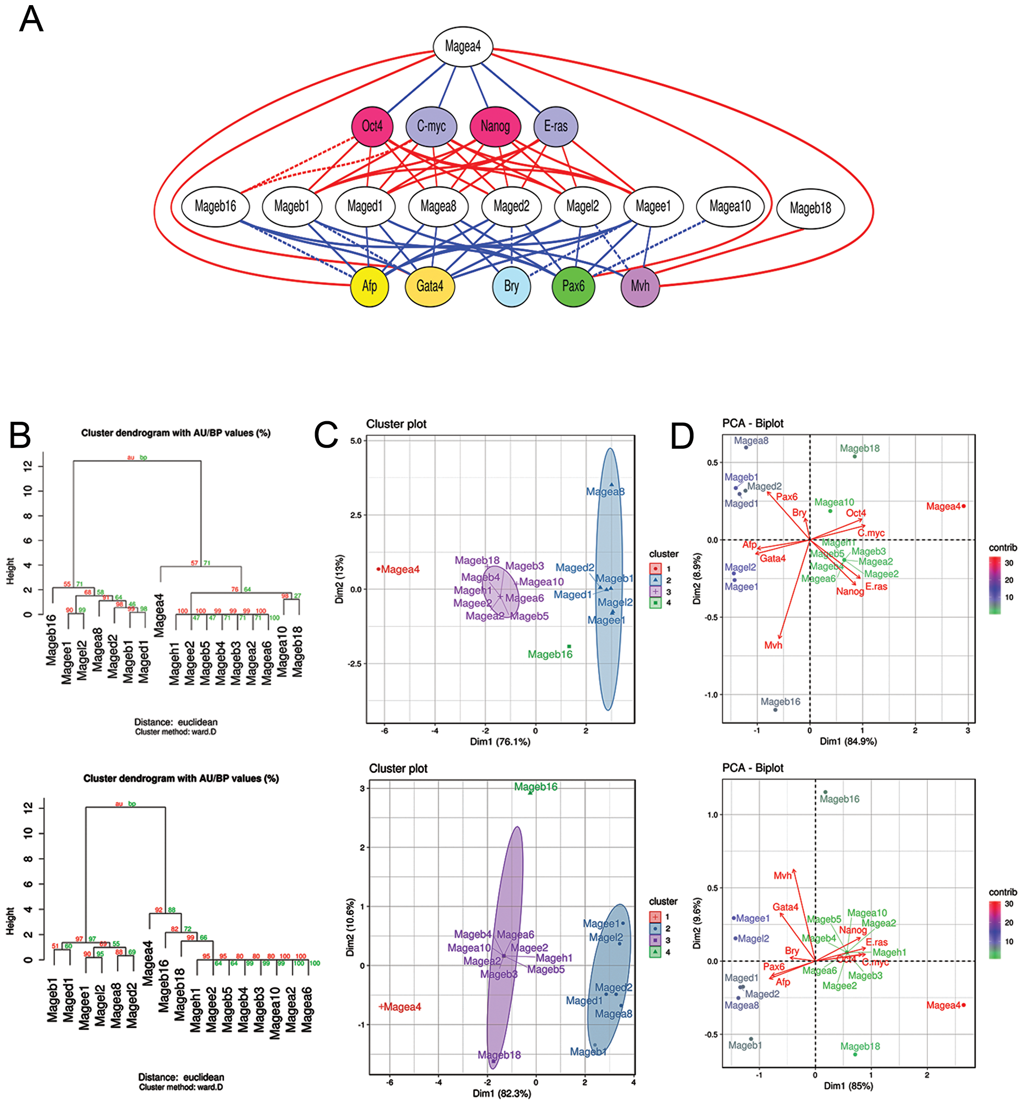 Mage family contributions in the self-renewal and differentiation of ESCs, EGCs, ECCs and E7.5 embryos.