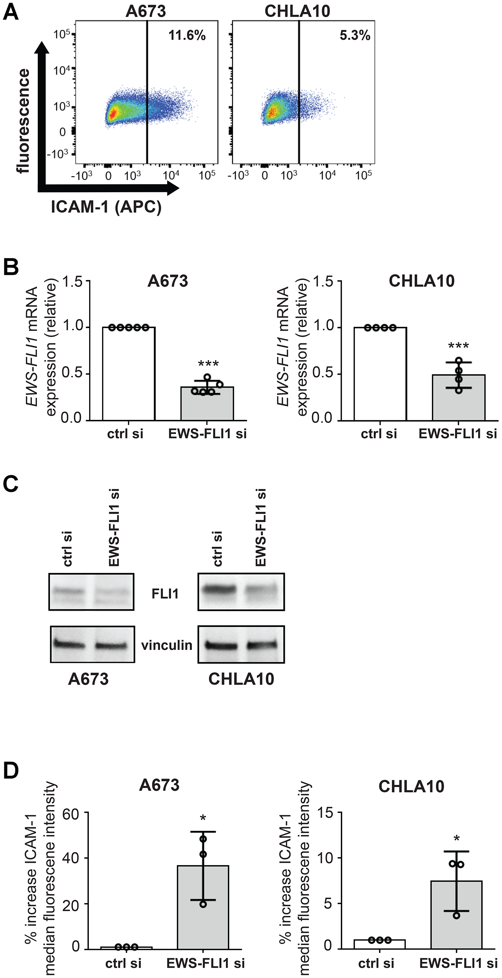 EWS-FLI1 and ICAM-1 expression are inversely correlated under basal conditions in our model system.