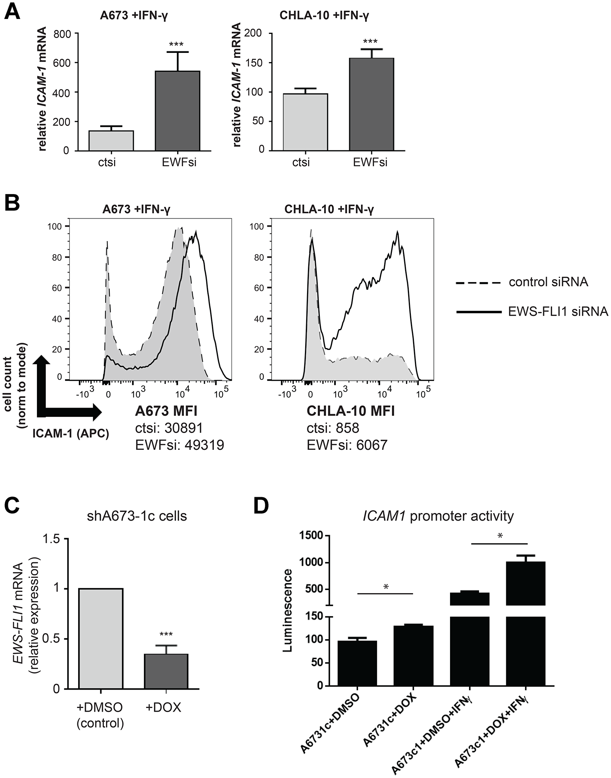 IFN-γ induced ICAM-1 expression is significantly enhanced in EWS-FLI1 'low' Ewing cells.