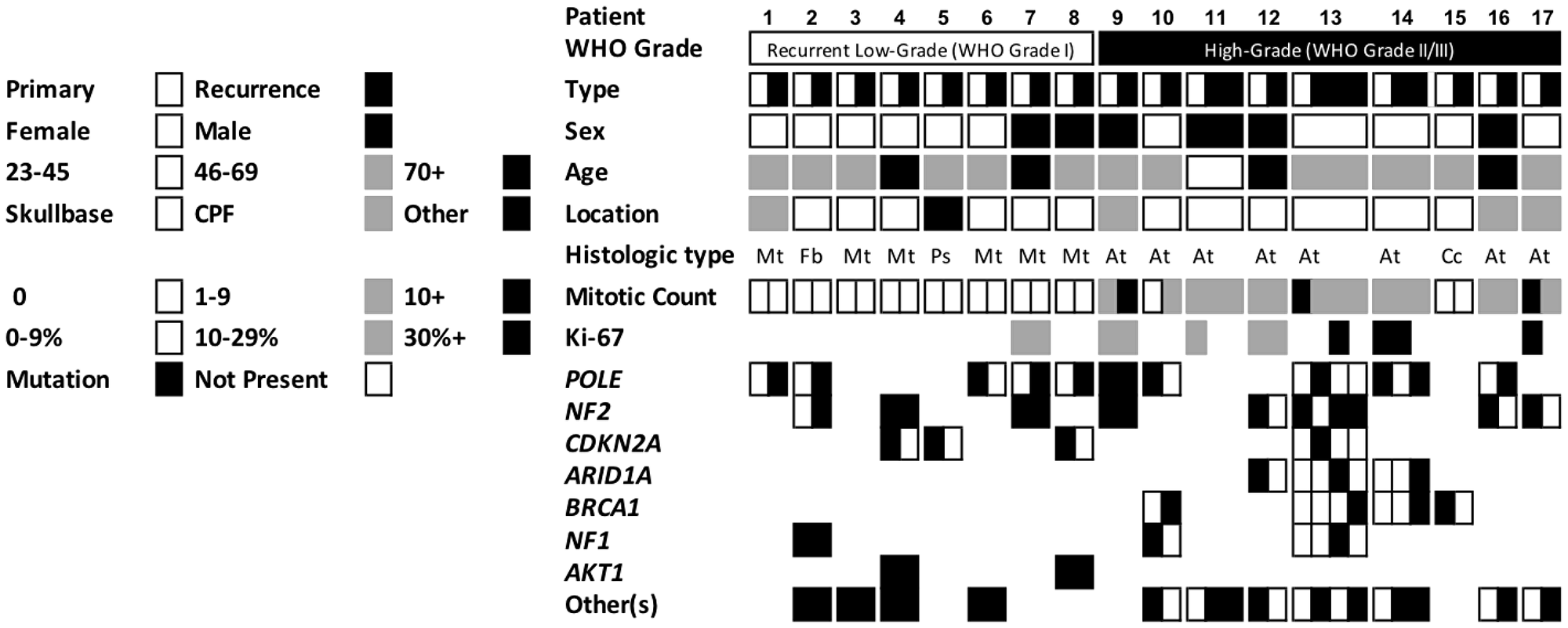 Demographics, tumor features, and mutation status of the cohort of 17 patients with matched targeted sequenced primary and recurrent meningioma.