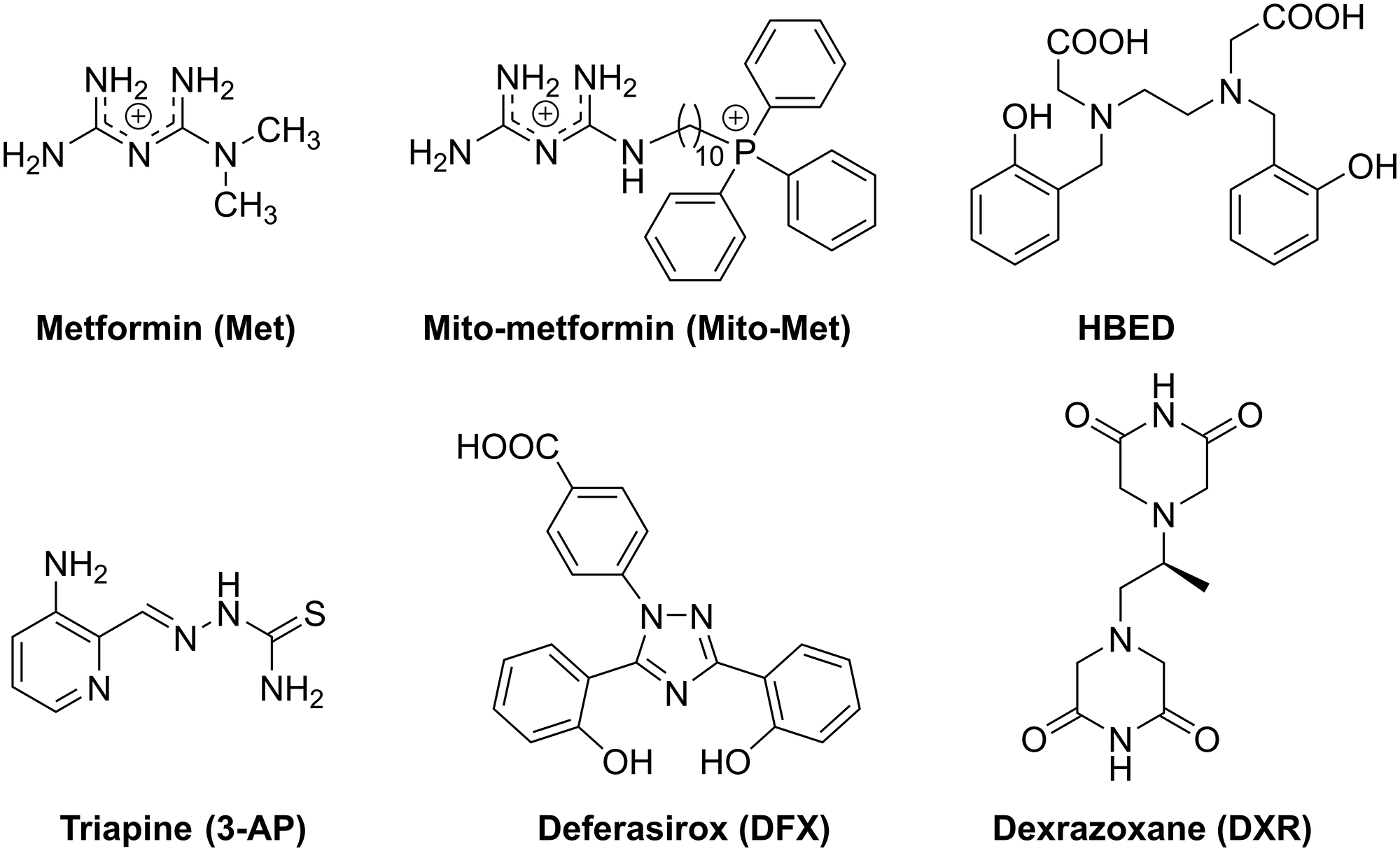 Chemical structures of iron chelators, Met, and Mito-Met used in this study.