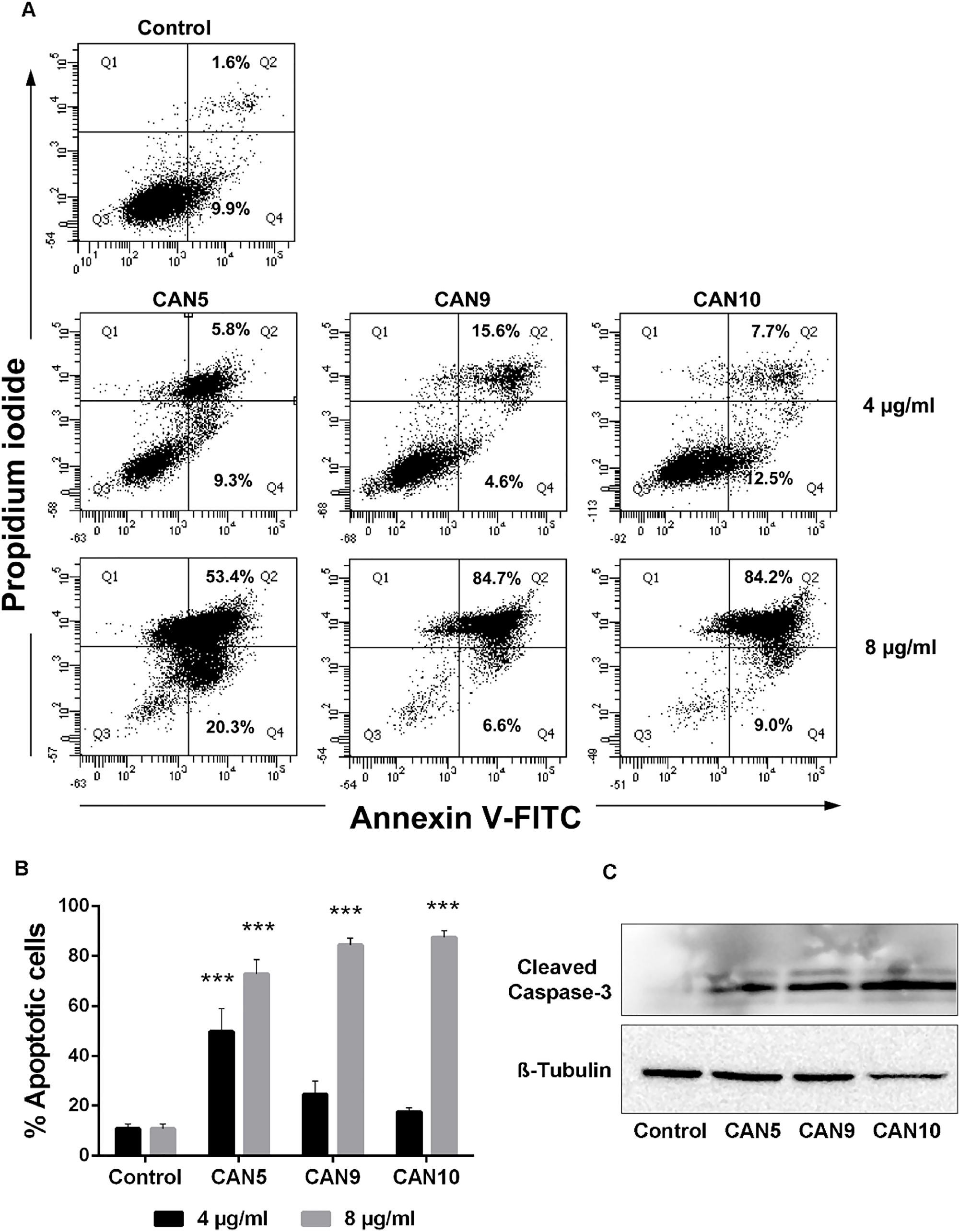 Proapoptotic effect of Cannabis extracts on cancer cells.