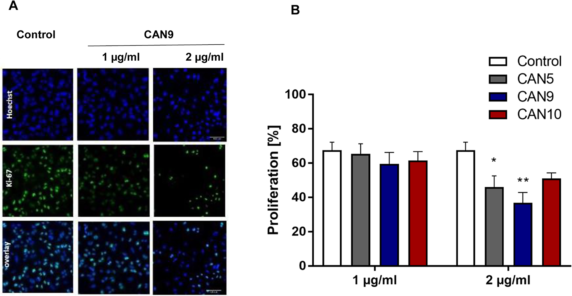 Anti-proliferative effect of Cannabis extracts on cancer cells.