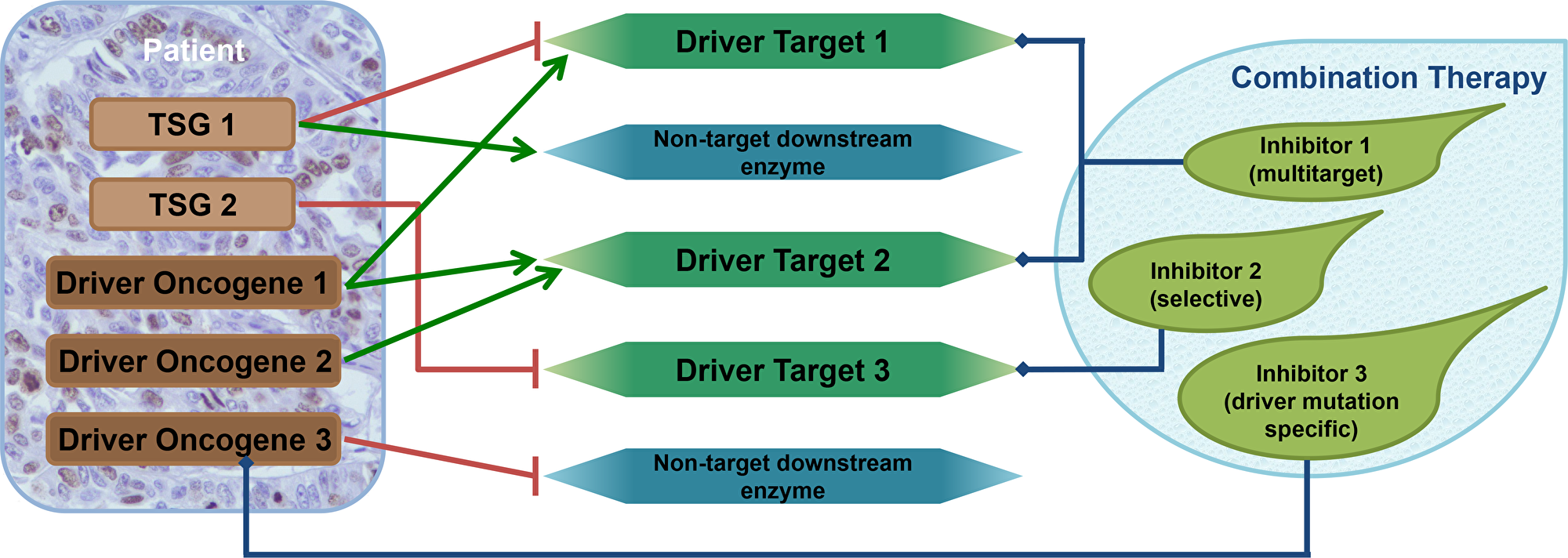 Combination therapy design using the driver gene concept.