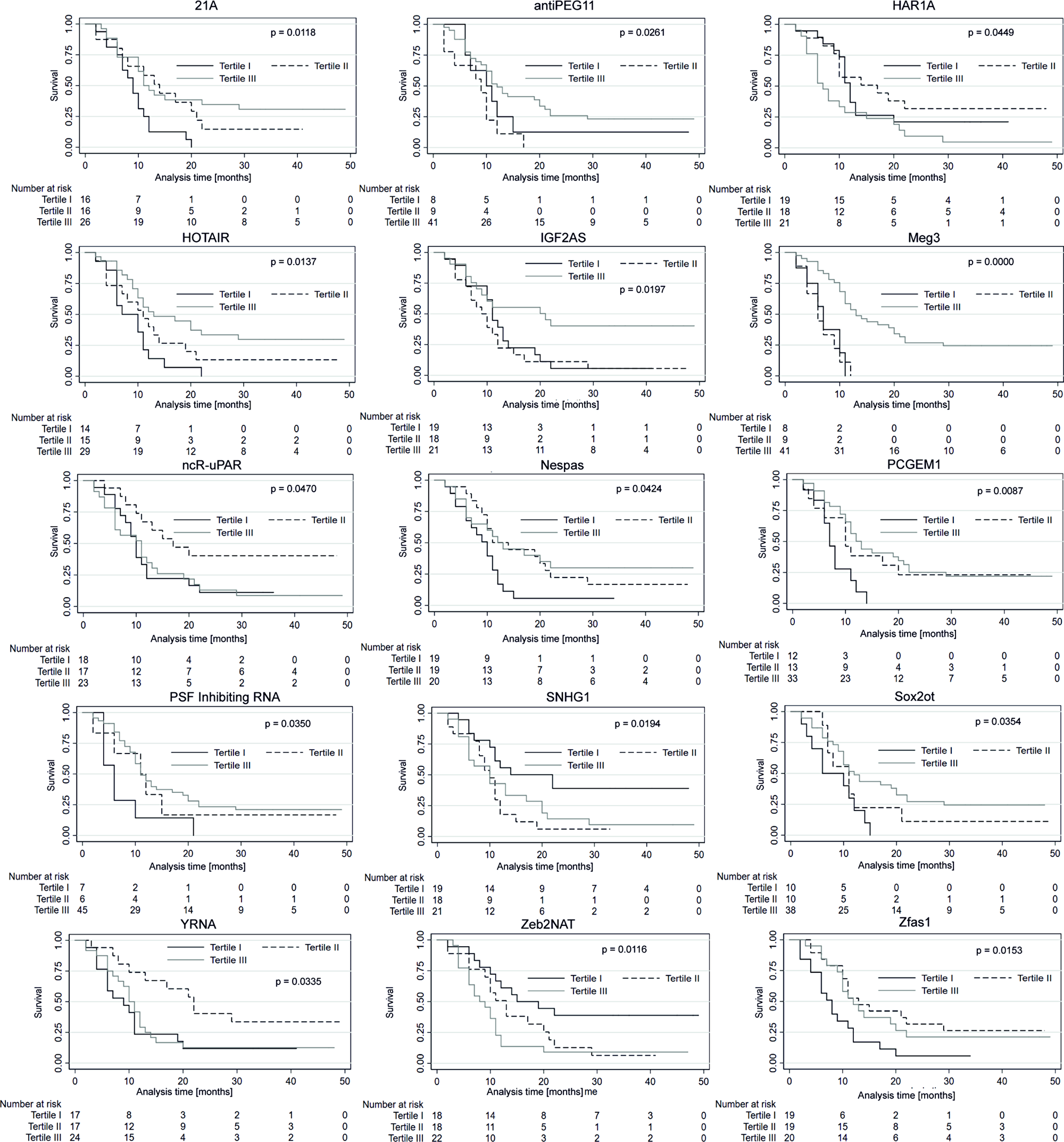Progression-free survival probability curves of the three subgroups stratified based on low, medium and high expression of lncRNAs.