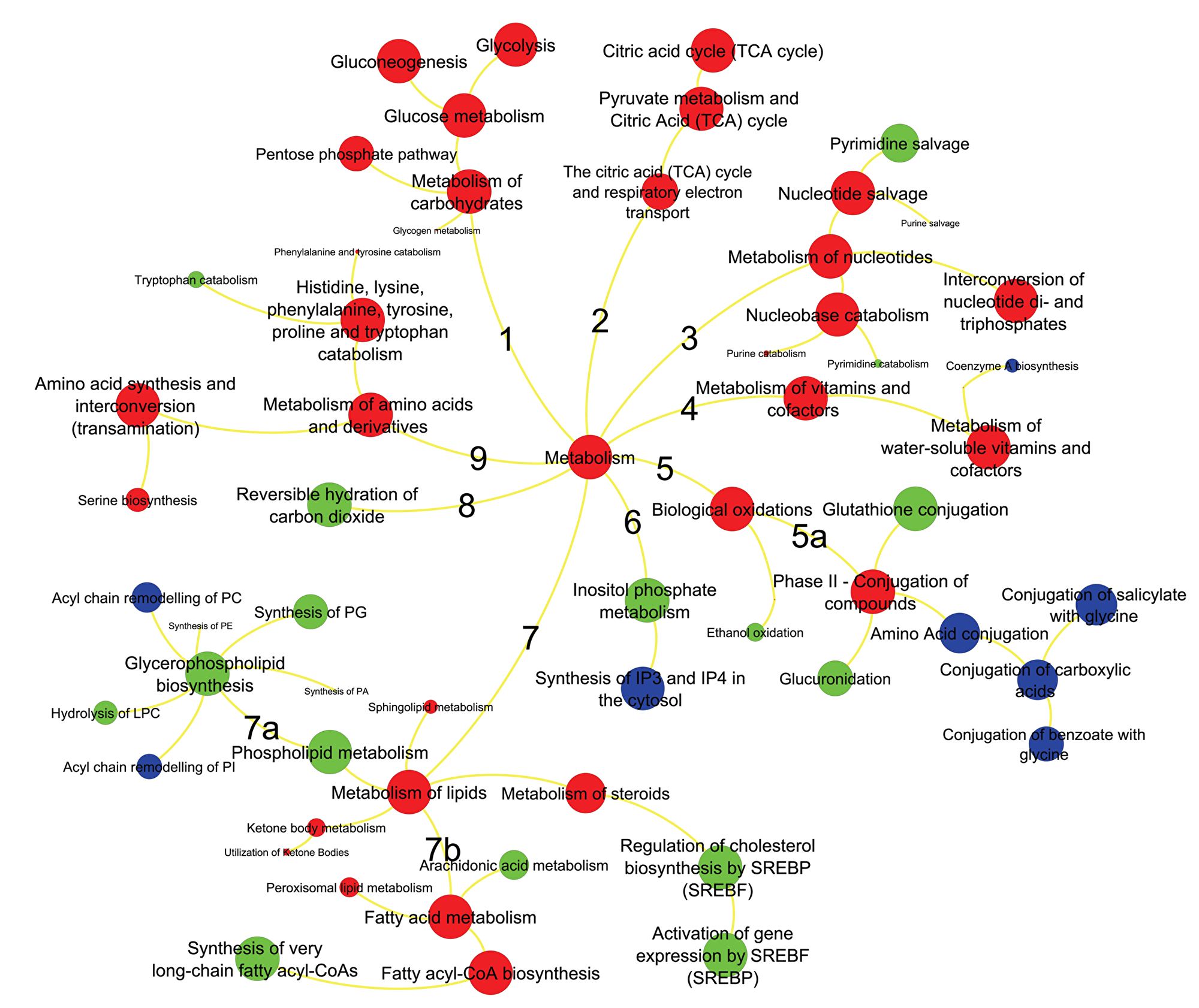 Metabolic pathways significantly enriched in ERneg breast tumors.