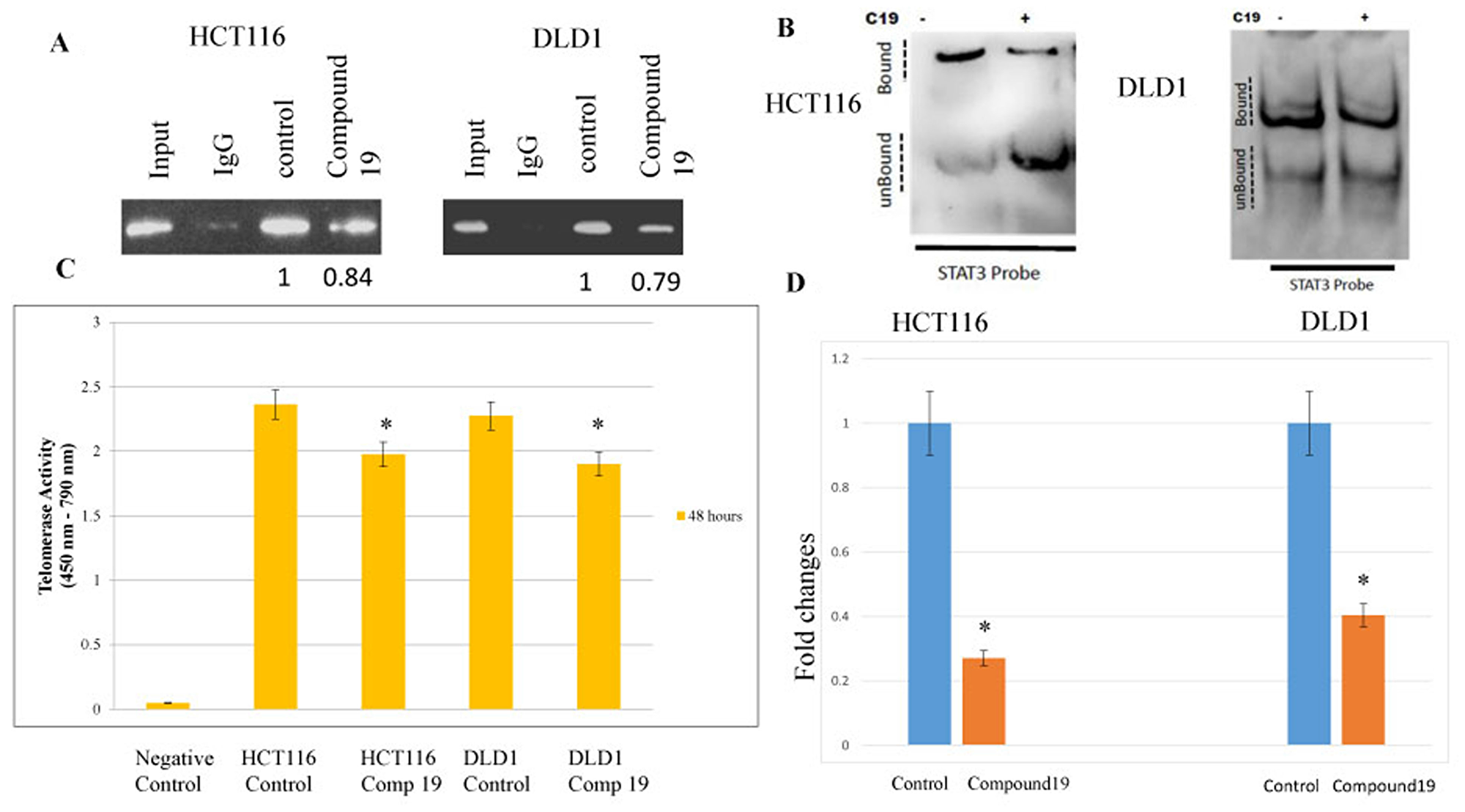 STAT3 binding to promoter region hTERT were inhibited by the compound 19 and corresponding telomerase activities were decreased and telomeric DNAs were shortened.