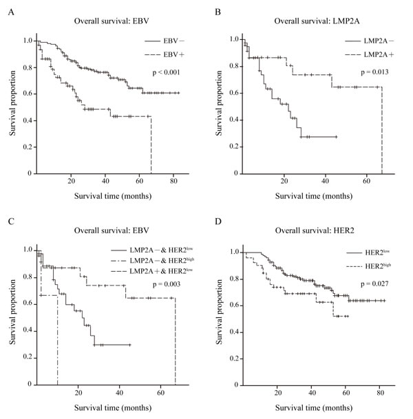 Overall survival condition within 279 GC patients.