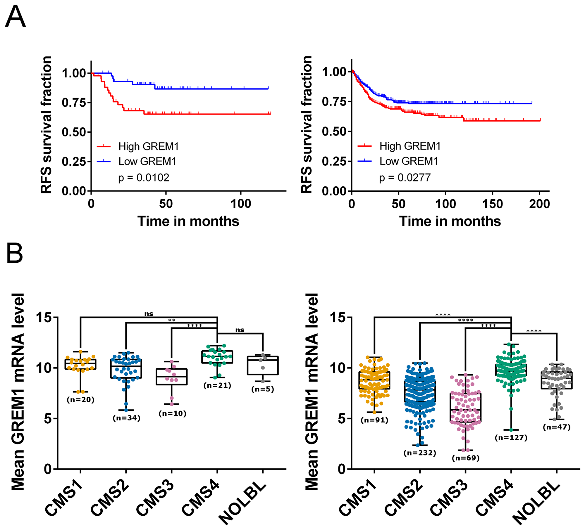 GREM1 mRNA levels correlate with prognosis, CMS subtypes and cancer cell types.
