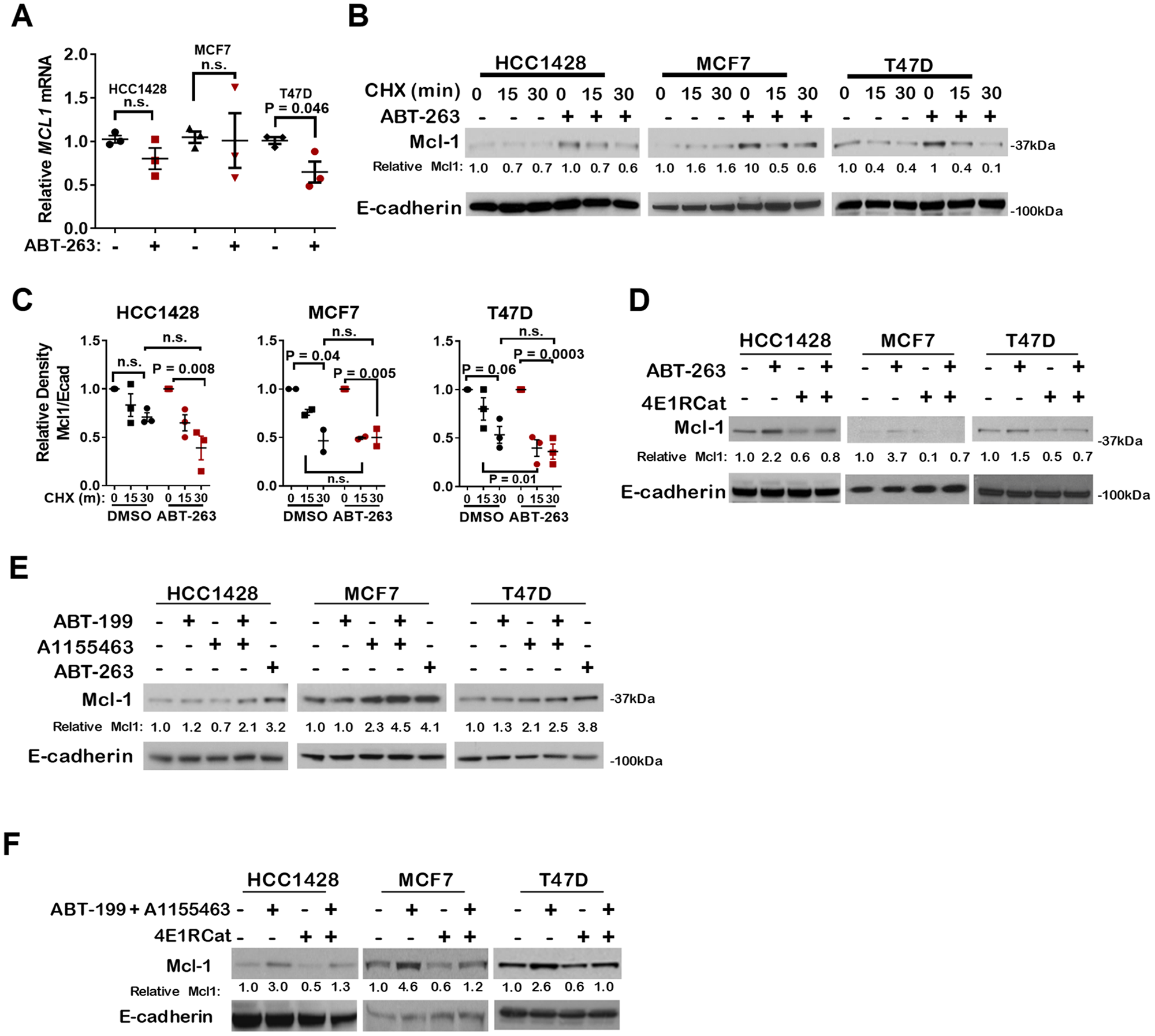 Pharmacological inhibition of Bcl-2 and/or Bcl-xL increases Mcl-1 expression through cap-dependent translation.