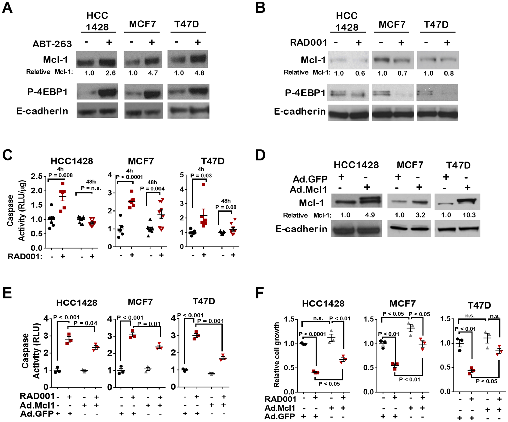 mTORC1 inhibition induces cell death through Mcl-1 depletion.