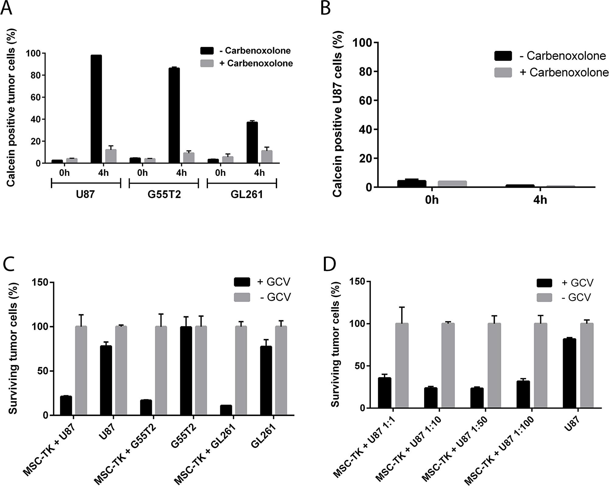 In vitro gap junction formation and bystander killing of glioblastoma cells by HSV-TK expressing MSCs.