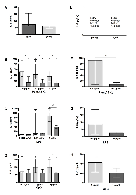 IL-6 release by macrophages (A–D) and microglial cells (E–H) from young and aged mice in vitro.