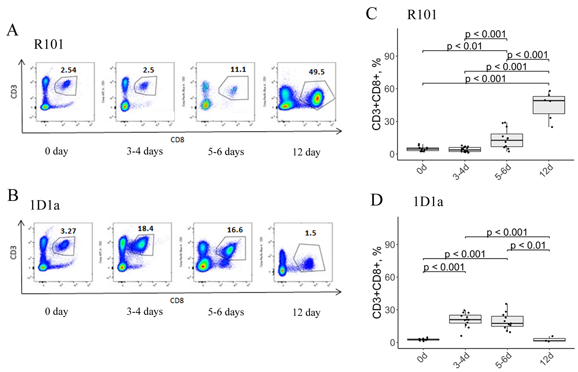 Flow-cytometric analysis of CD3/CD8 expression on lymphocytes from the peritoneal cavity of WT (A, C) and Tg (B, D) mice on days 0, 3-4, 5-6, and 12 after immunization.