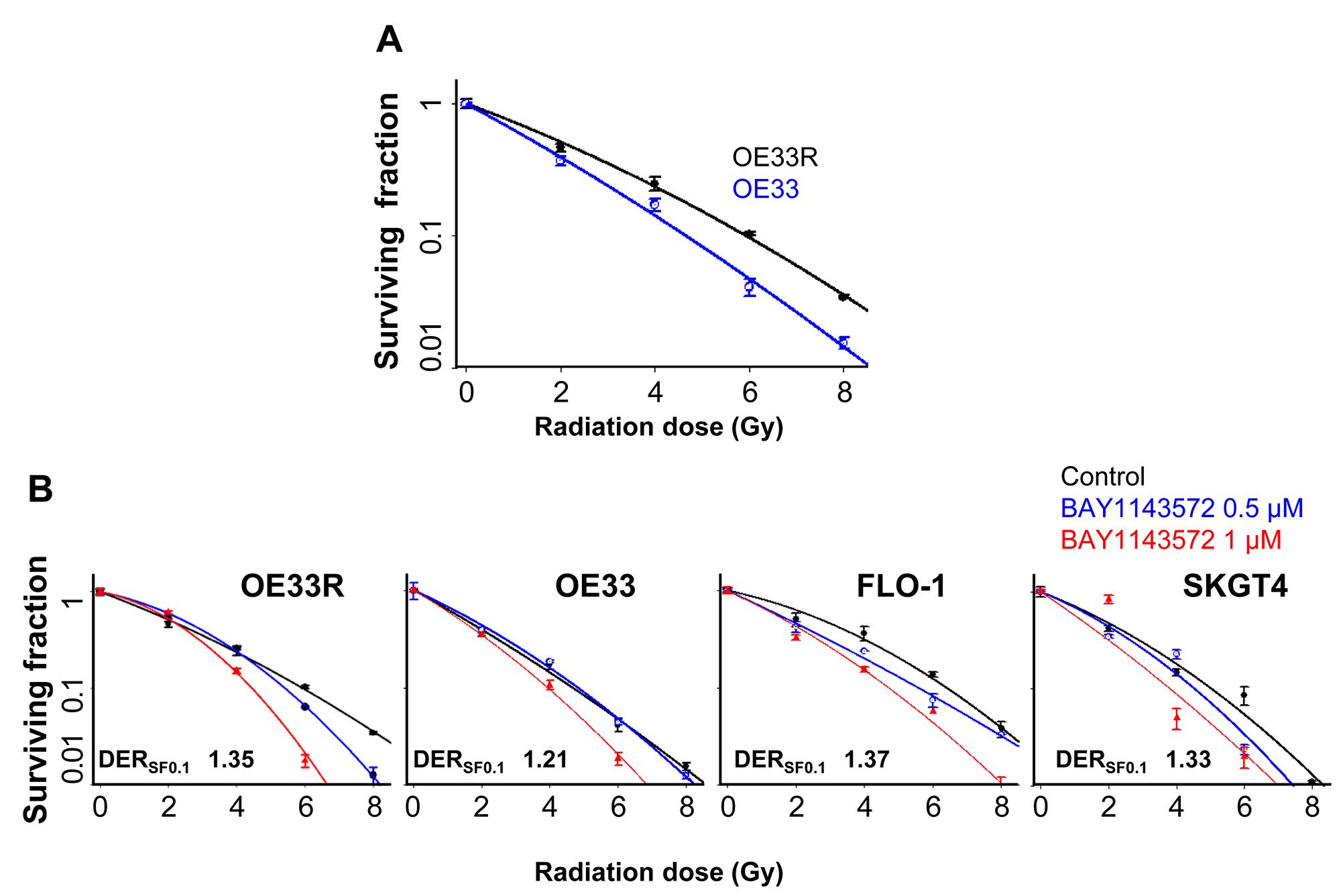 CDK9 inhibitor has potent radiosensitization efficacy in esophageal adenocarcinoma cells.