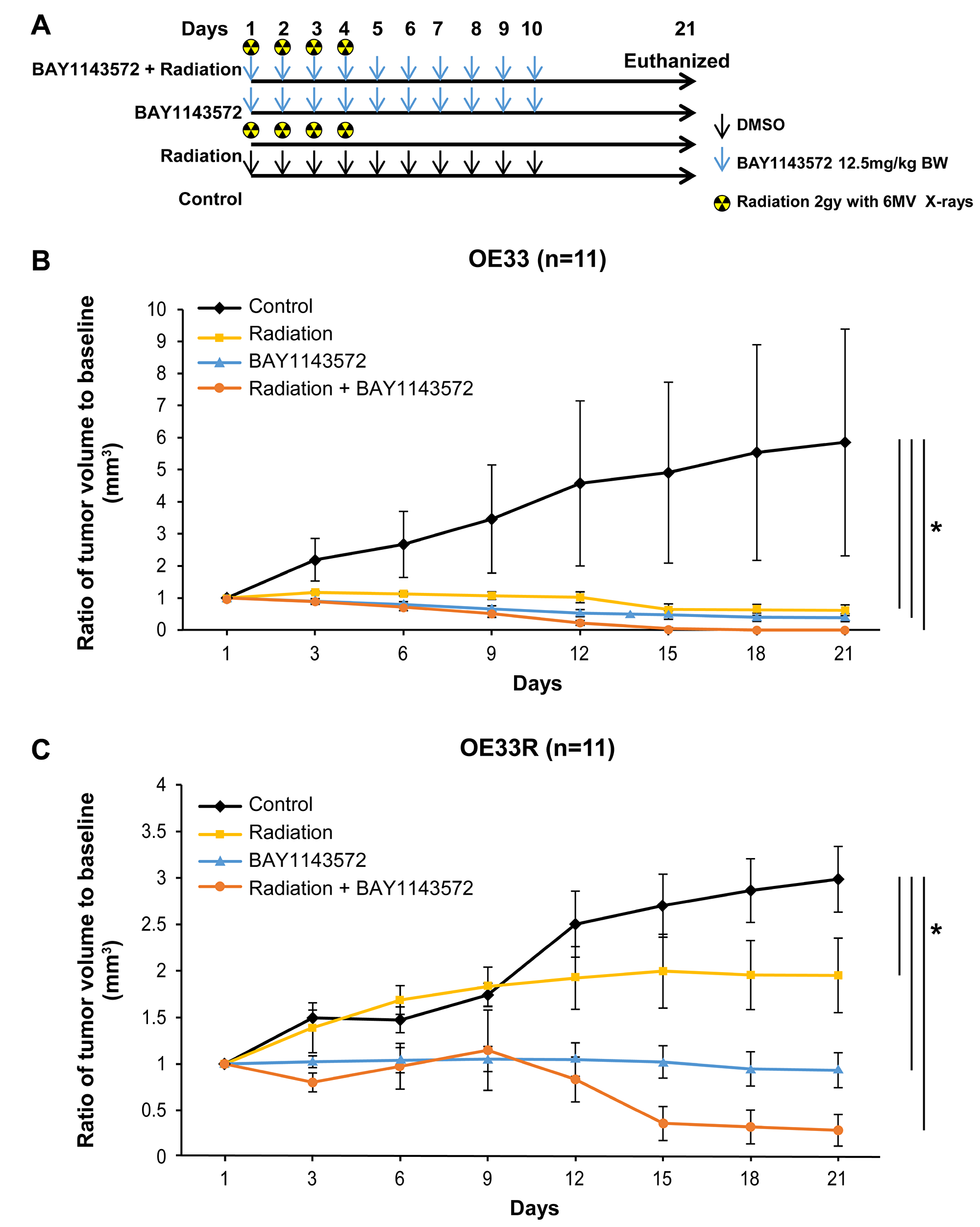 CDK9 inhibitor enhances sensitization of fractionated radiation in OE33 and OE33R xenografts.