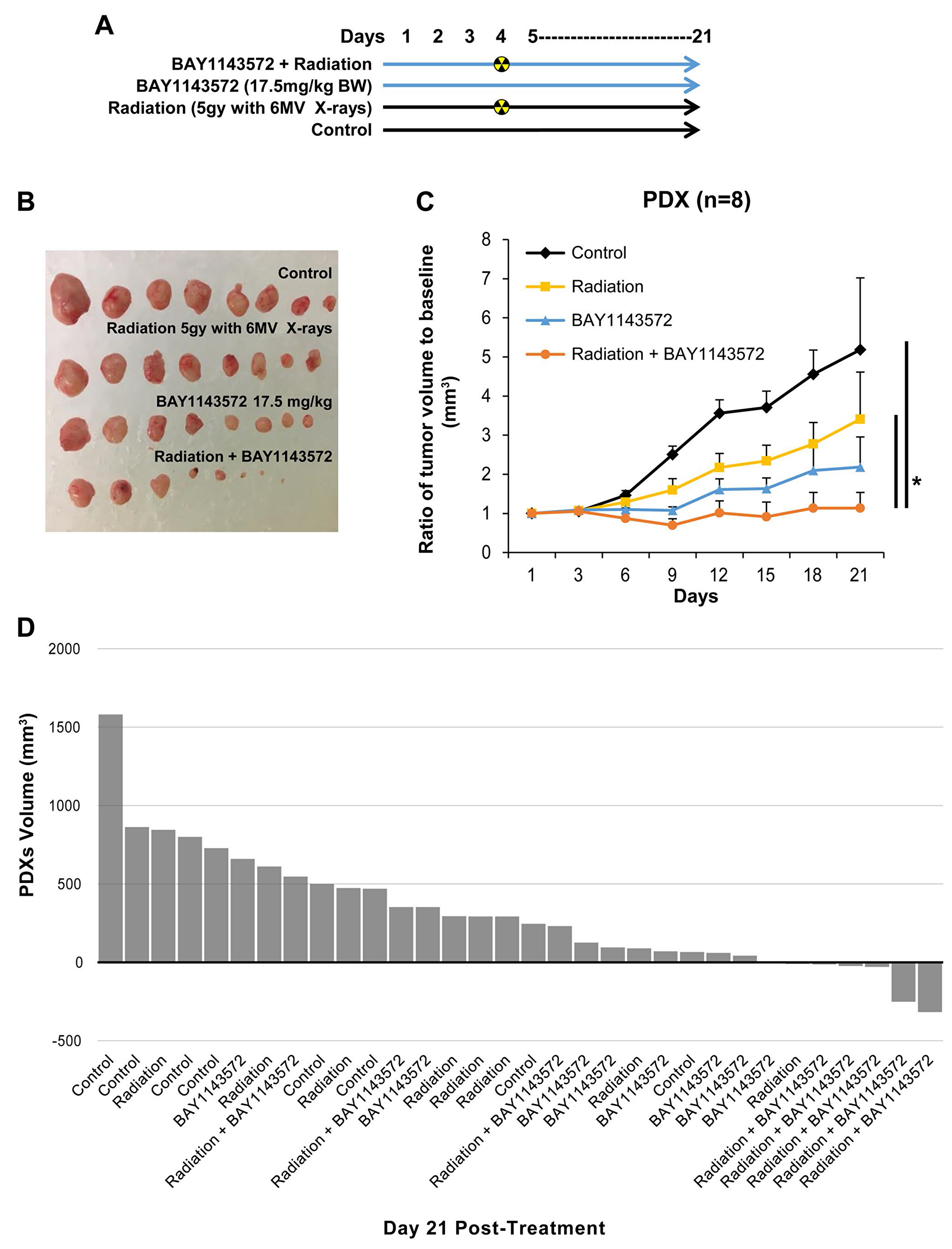 CDK9 inhibitor enhances sensitization of radiation in esophageal adenocarcinoma PDXs.