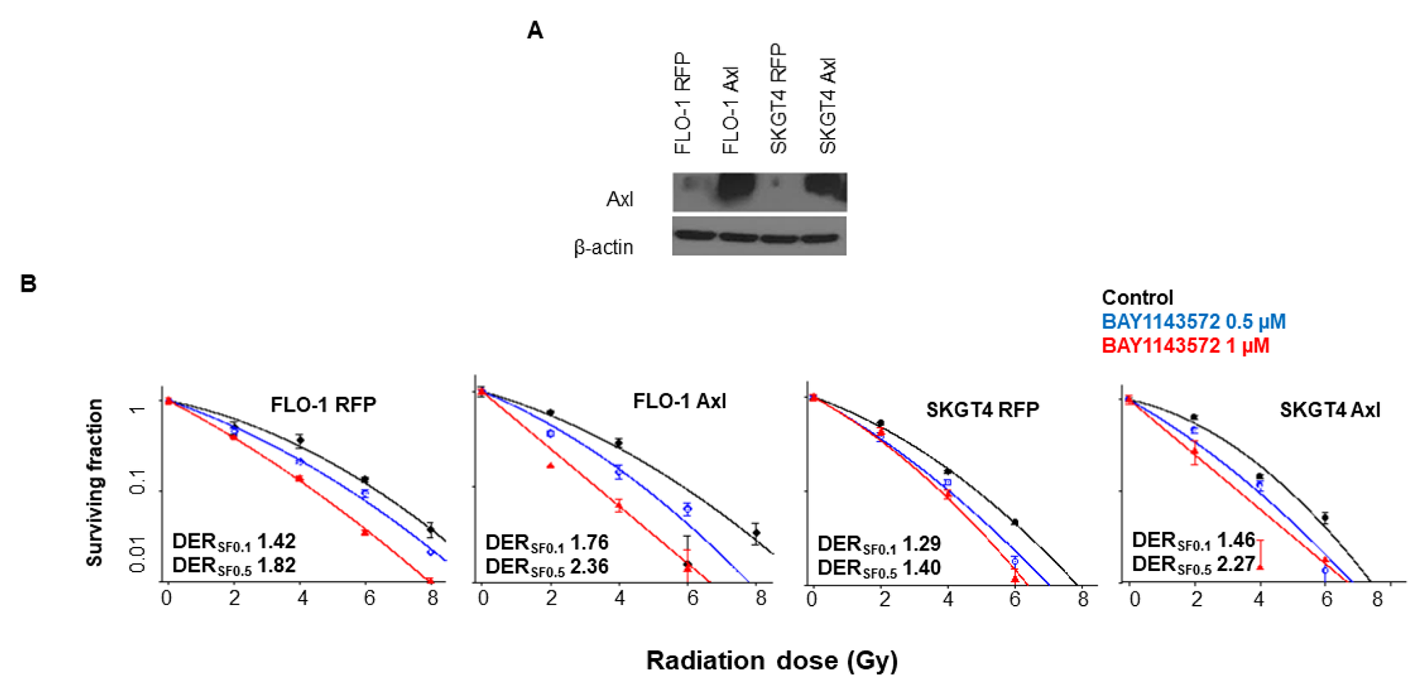 Overexpression of Axl enhanced radiosensitization by CDK9 inhibitors in esophageal adenocarcinoma cells.