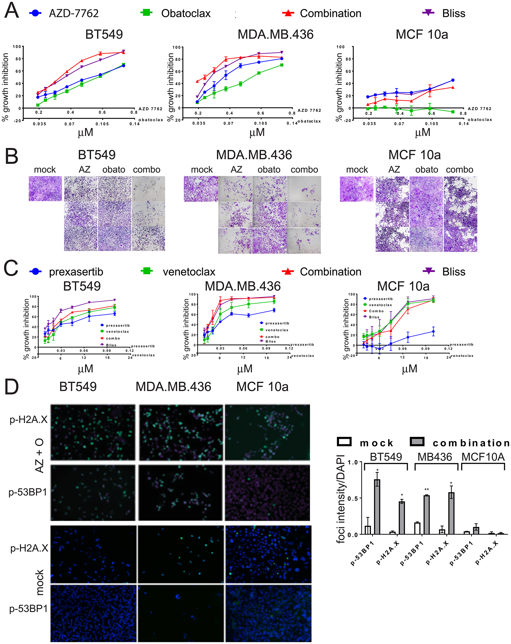 Growth inhibition of TNBC cell lines by combinations of CHK1 inhibitors and BCL-2 inhibitors.