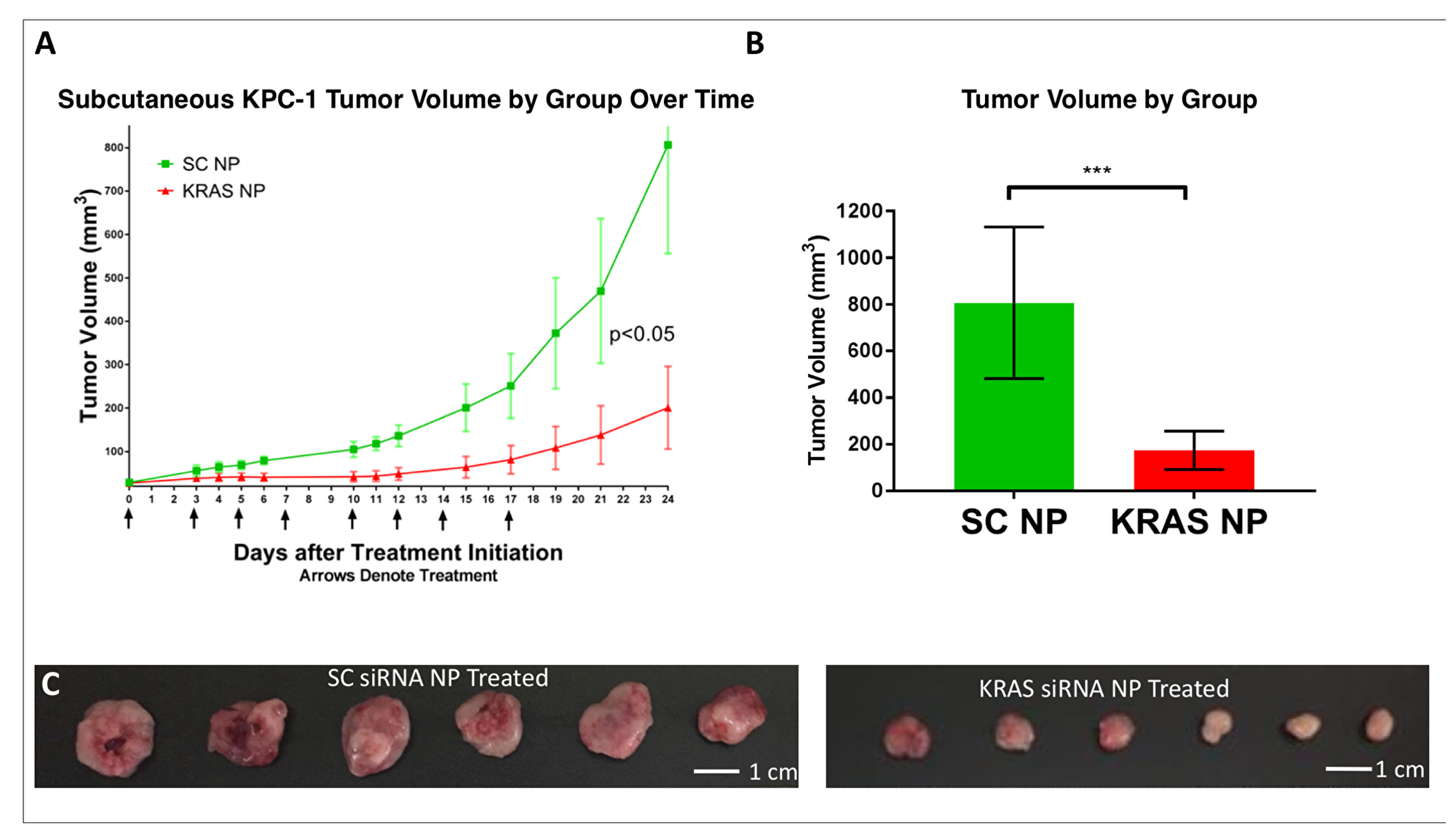 Demonstration of KPC-1 pancreatic cancer growth suppression in-vivo.