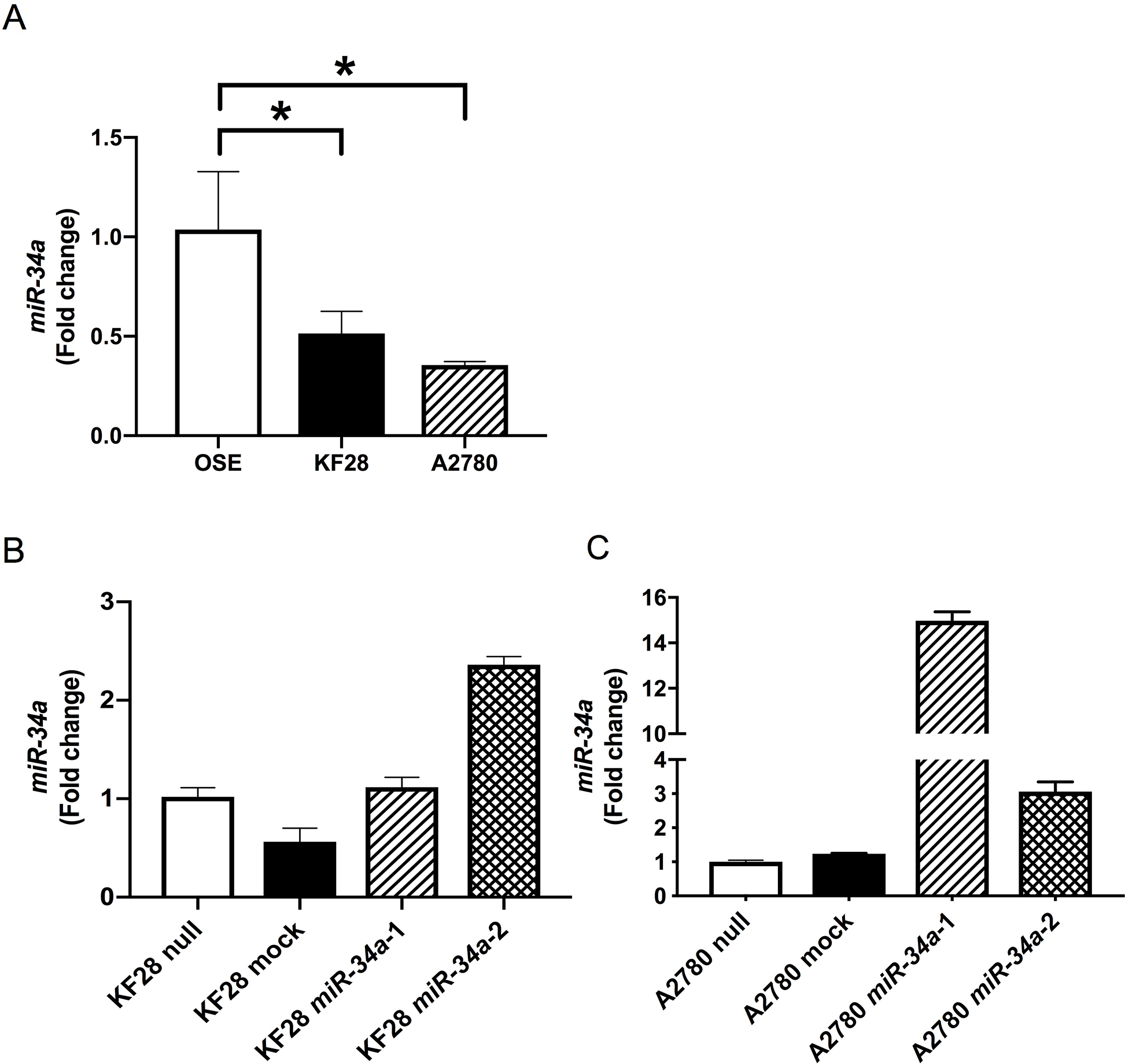 Establishment of HGSC cell lines with stable miR-34a overexpression miR-34a expression was quantified using the comparative method in real-time RT-PCR analysis.