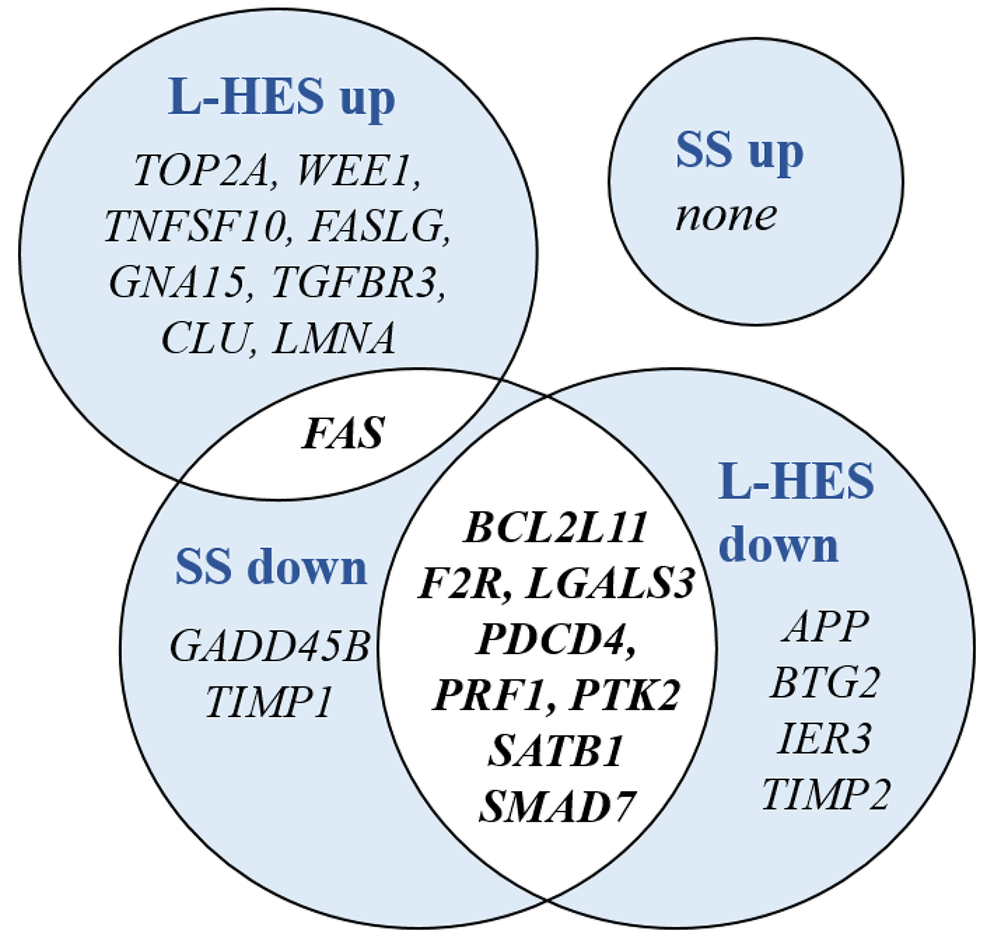 DEGs shared between SS and L-HES are enriched in the Hallmark gene set for apoptosis.