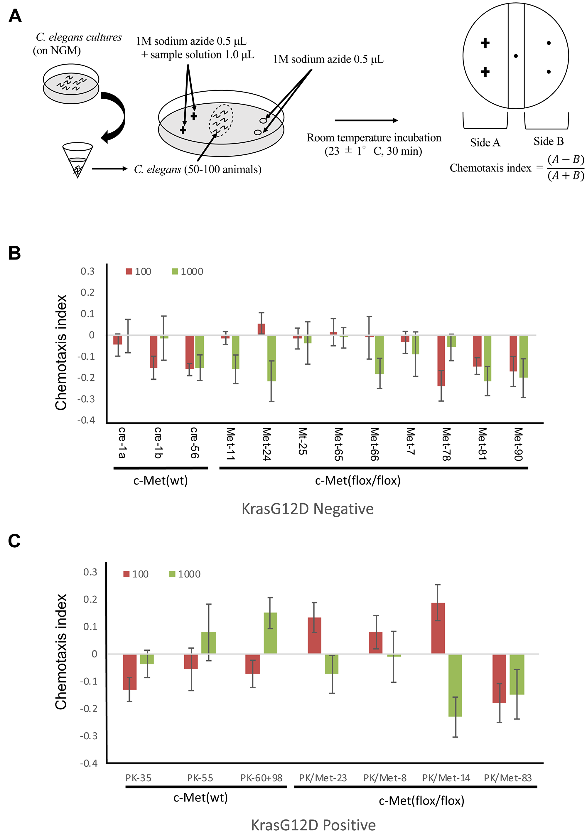 Detection of tumor in mice by C. elegans scent.