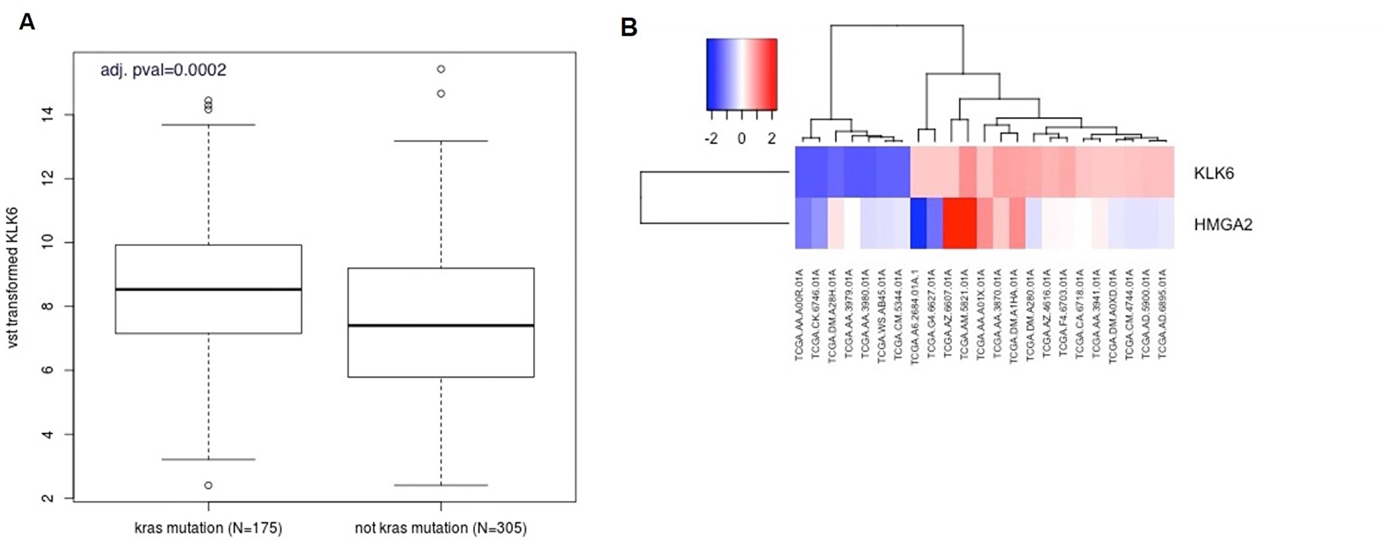 Bioinformatic analysis of KLK6 and HMGA2 expression in the CRC patients.