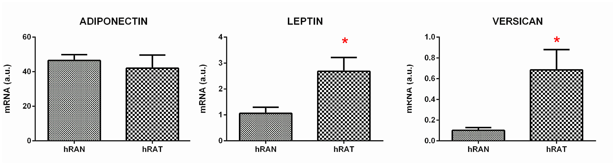 Relative fold expression of versican, adiponectin and leptin gene expression from hRAN and hRAT.
