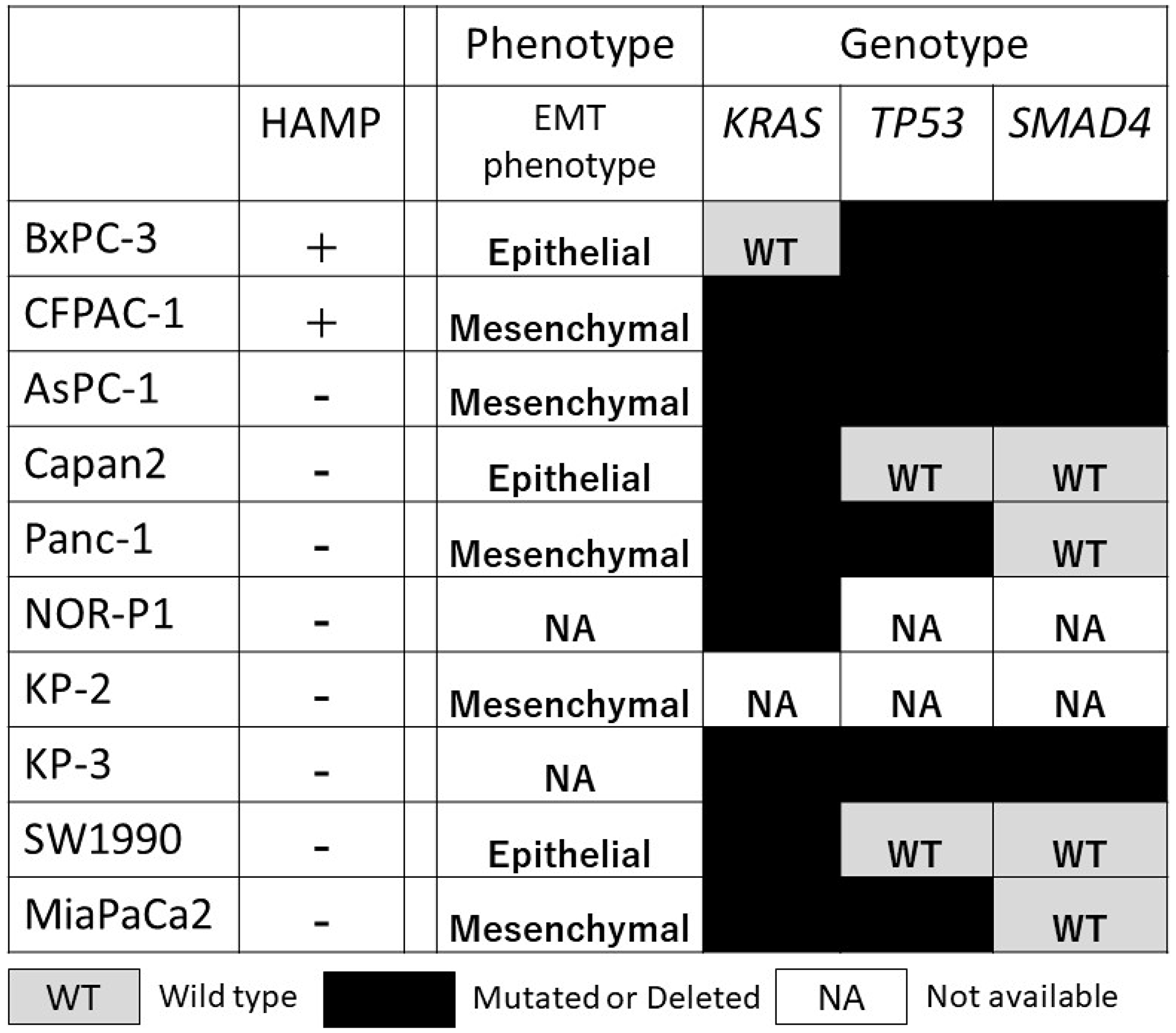 Correlation between HAMP and other known phenotype (epithelial/mesenchymal phenotype) and genotype (genetic alterations in the KRAS, TP53, and SMAD4) in a panel of 10 PDAC cell lines.