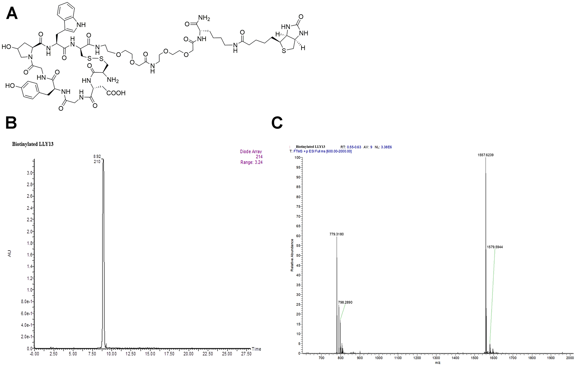 Structure and characterization of biotinylated LLY13.