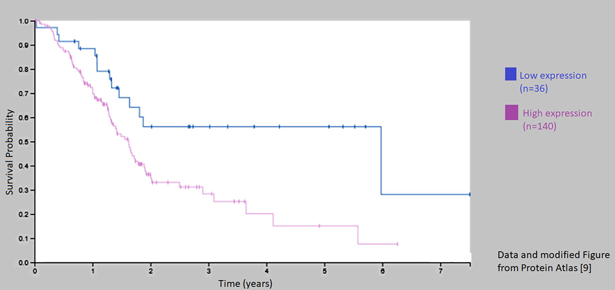 Kaplan–Meier curve for patients with low and high expression of C1-INH (Sering 1).