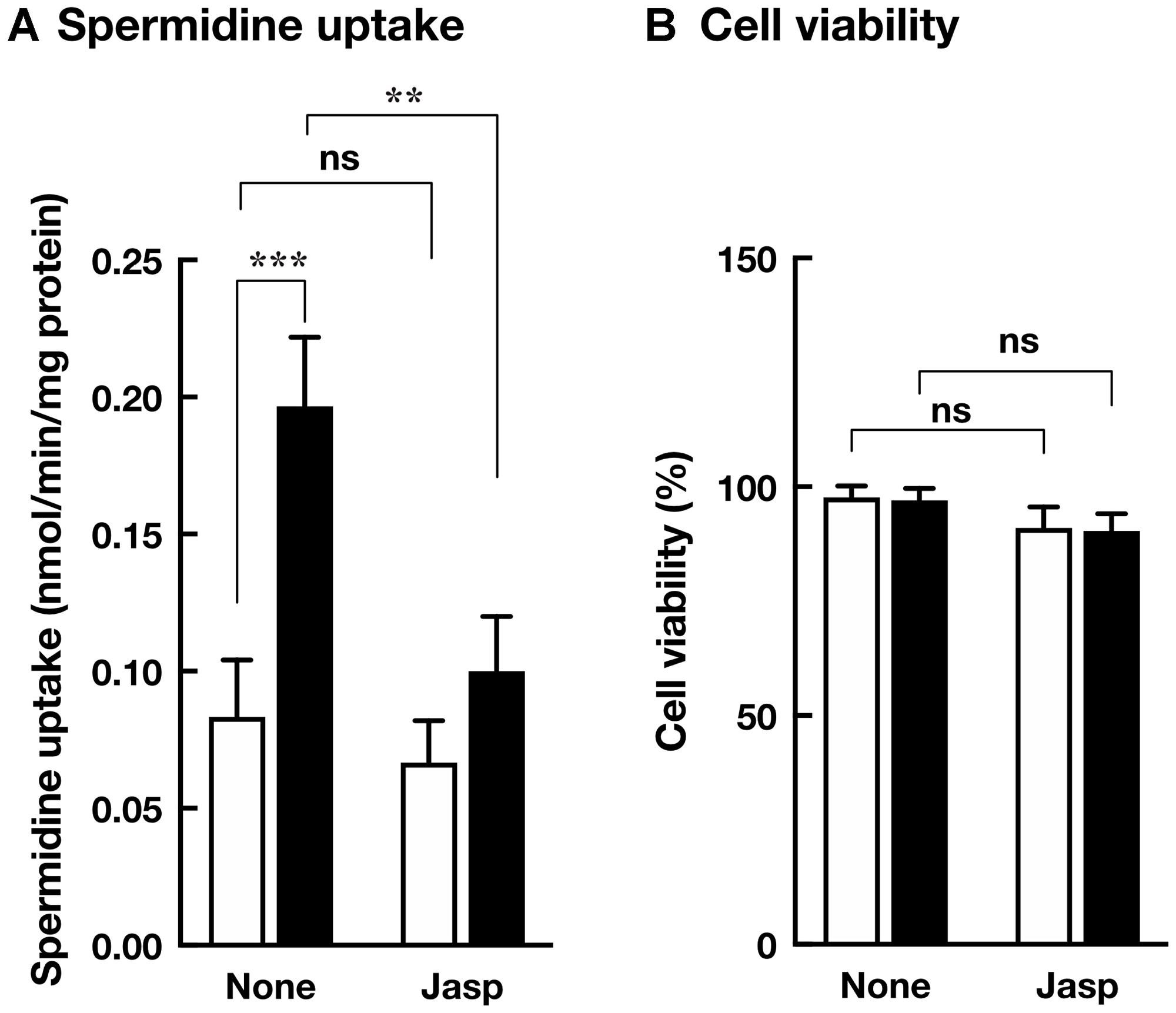 Effect of jasplakinolide on polyamine transport.