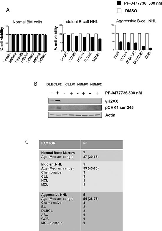 Effects of PF-0477736 in primary lymphoma cells and bone marrow mononucleated cells.