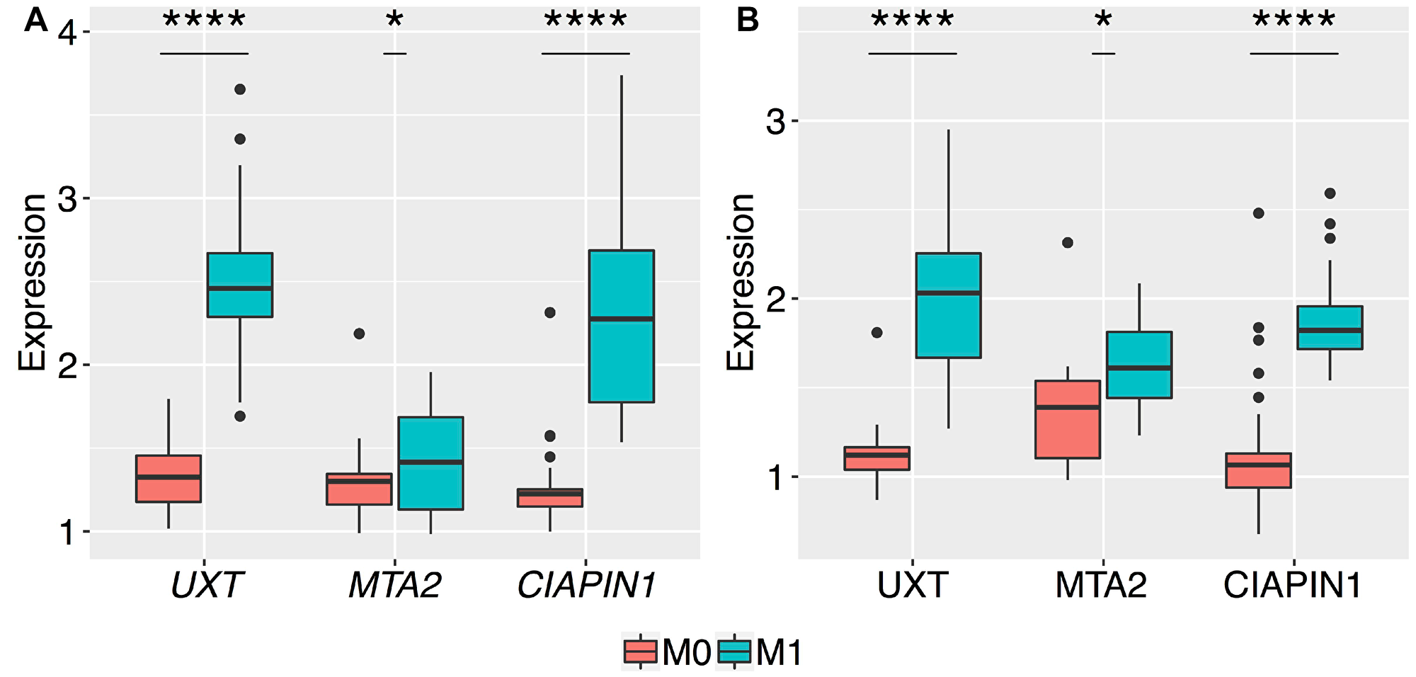 Box plots of the normalized relative expression of UXT, MTA2, and CIAPIN1 genes in the gastric tumor tissues of patients without metastasis (M0) and with metastasis (M1).