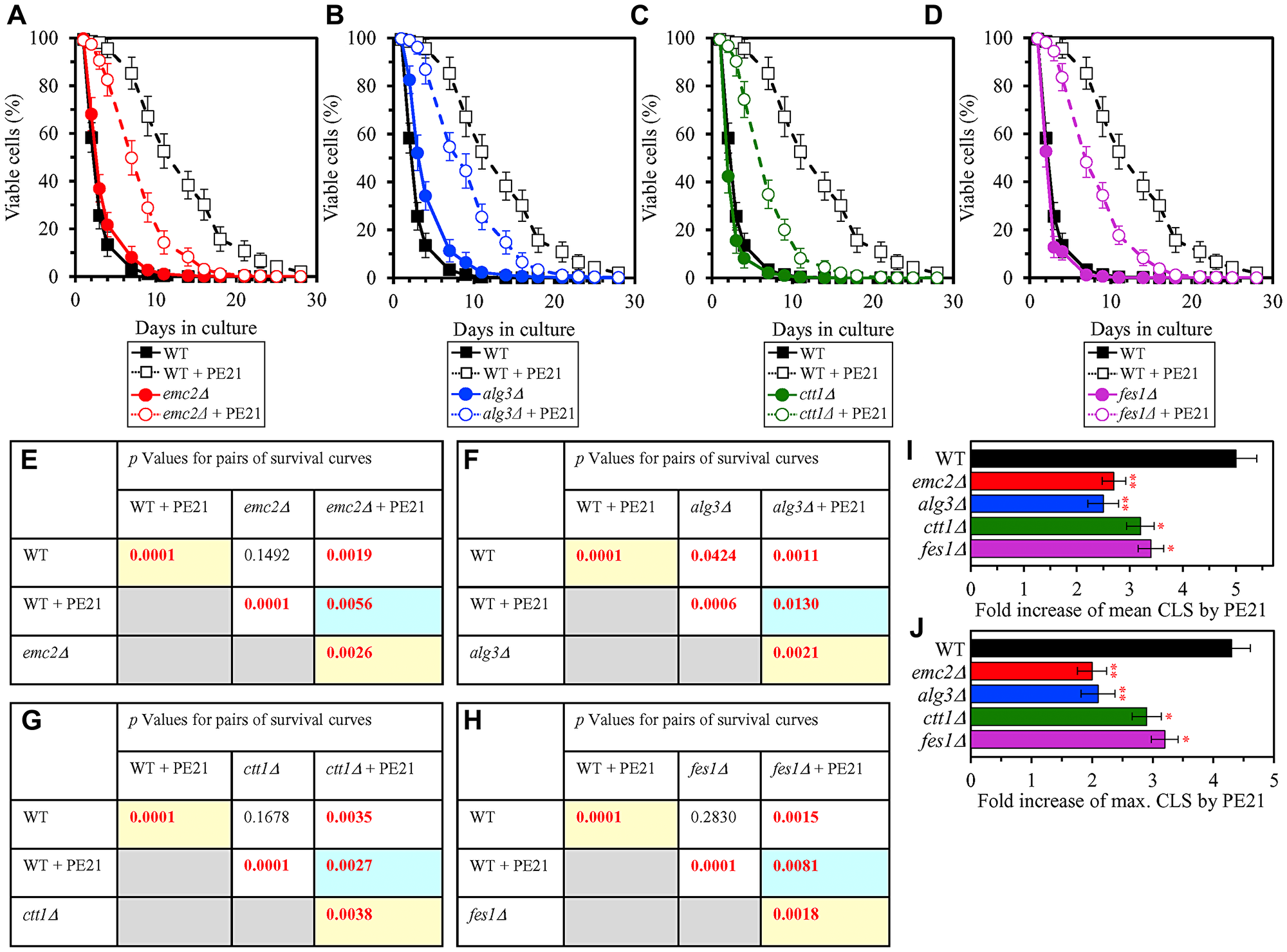 Single-gene-deletion mutations eliminating proteins that are upregulated by both PE21 and UPRER stimuli decrease the efficiency with which PE21 extends yeast longevity.