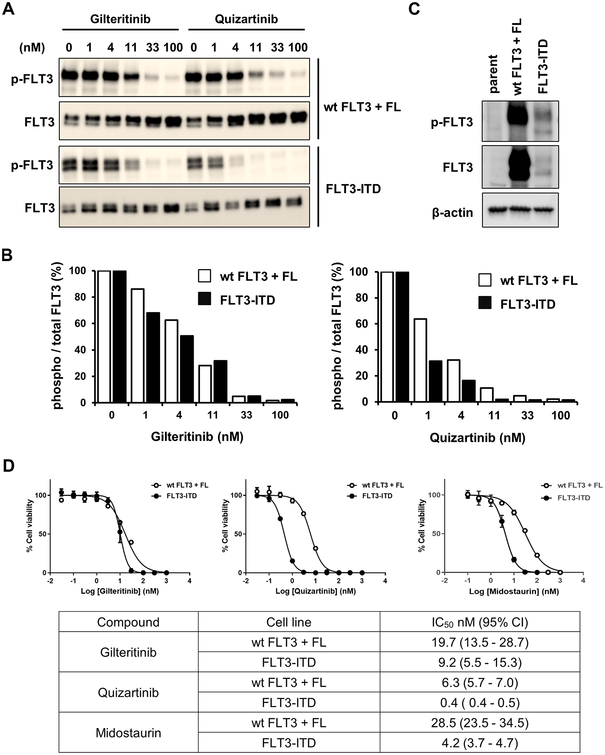 Inhibitory effects of gilteritinib and quizartinib on FLT3wt and FLT3-ITD.