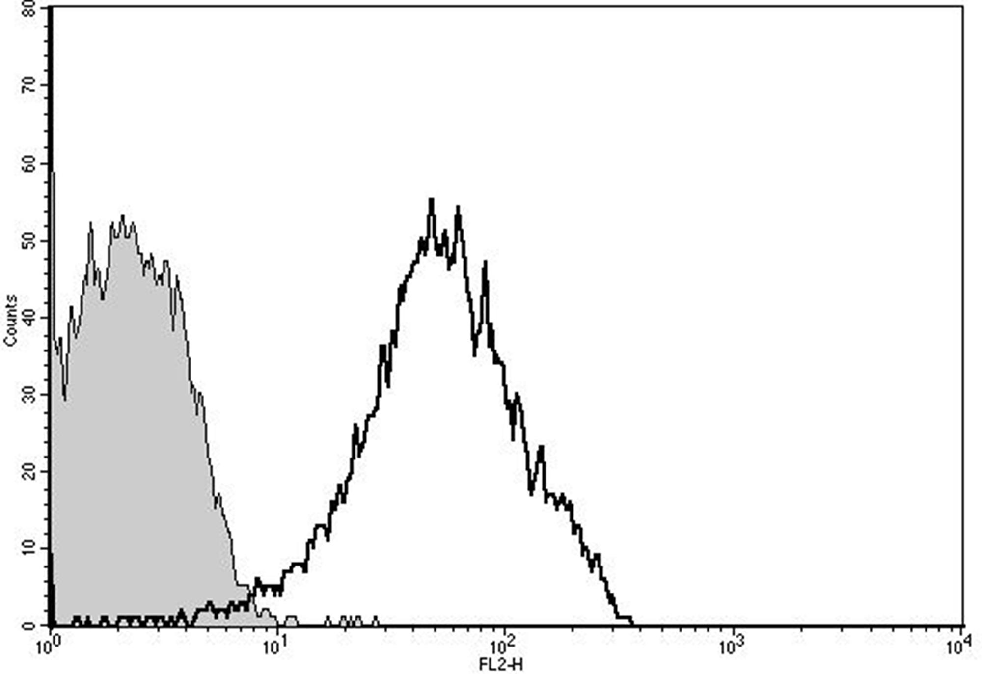 Doxorubicin loading in PMP analyzed by flow cytometry.