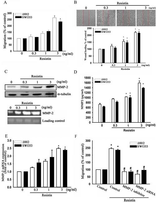 Resistin promotes cell migration of chondrosarcoma cells through increasing matrix metalloproteinase (MMP-2) expression.