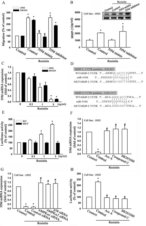 Resistin promotes cell migration and matrix metalloproteinase (MMP-2) expression by down-regulating microRNA (miR)-519d expression.