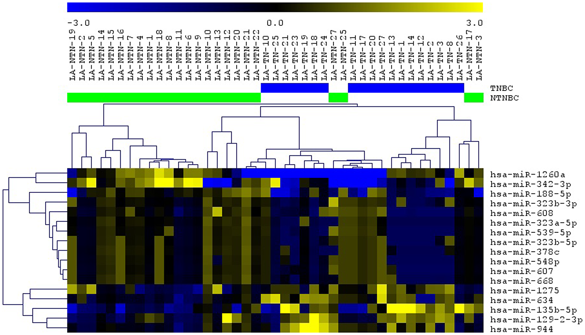 Unsupervised hierarchical clustering (UHS) analysis applied to the TNBC (blue bars) and non-TNBC (green bars) cases analyzed using the selected 17 miRNAs.